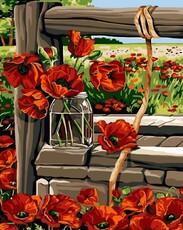 "РН-032 Картина по номерам ""Маковое поле"" (40х50 см) на холсте"