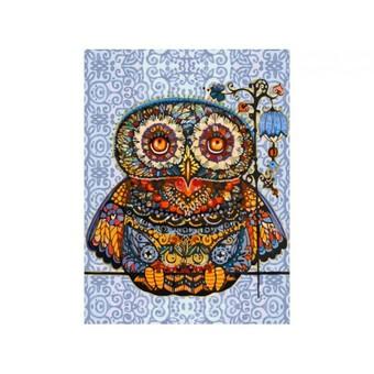 "006-AS Картина по номерам ""Волшебная сова"" (30х40 см)"