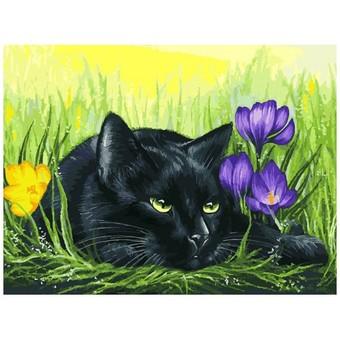 """113-AS Картина по номерам """"Кот и крокусы"""" (30х40 см)"""