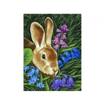 "115-AS Картина по номерам ""Кролик"" (30х40 см)"