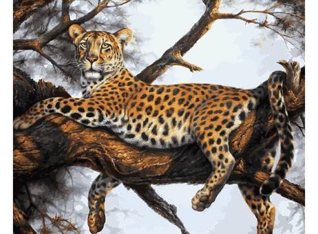 "170-AB Картина по номерам ""Леопард на отдыхе"" (40х50 см)"
