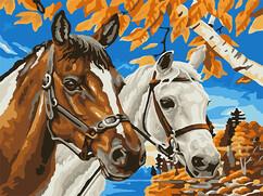 """РН2-039 Картина по номерам """"Конь и лошадь"""" (30х40 см) на холсте"""