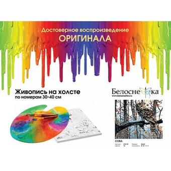 """218-CE Картина по номерам """"Сова"""" (30х40 см)"""