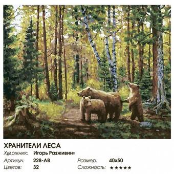 """228-AB Картина по номерам """"Хранители леса"""" (40х50 см)"""