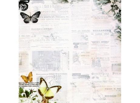 "086-SB Набор бумаги ""Силуэт бабочки"""