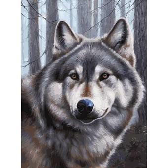 """3090-CS Картина по номерам """"Волк"""" (29,5х39,5 см) на картоне"""
