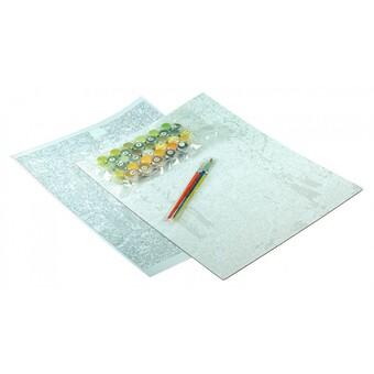 "3113-CS Картина по номерам ""Кот и крокусы"" (30х340 см) на картоне"