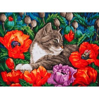 "3183-CS Картина по номерам ""Кот в маках"" (30х40 см) на картоне"