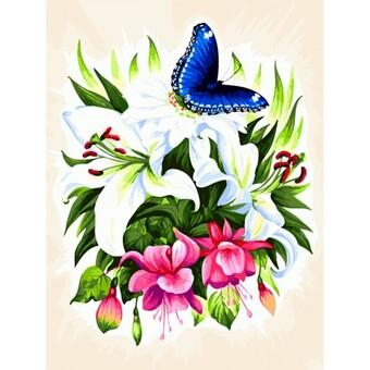 "363-AS Картина по номерам ""Бабочка в ботаническом саду"" (30х40 см) на холсте"