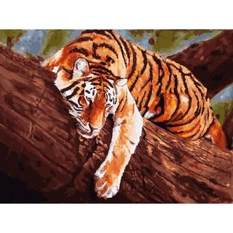 """364-AS Картина по номерам """"Тигр на дереве"""" (30х40 см) на холсте"""