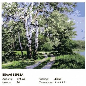 "371-AB Картина по номерам ""Белая берёза"" (40х50 см)"