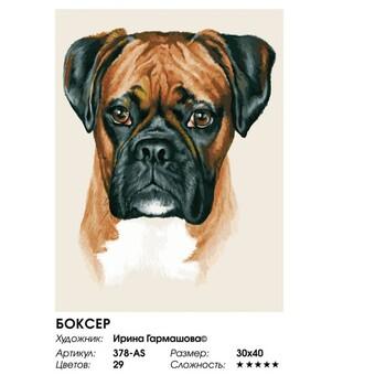 "378-AS Картина по номерам ""Боксер"" (30х40 см) на холсте"
