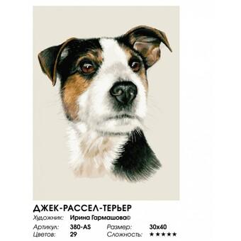 "380-AS Картина по номерам ""Джек-рассел-терьер"" (30х40 см) на холсте"