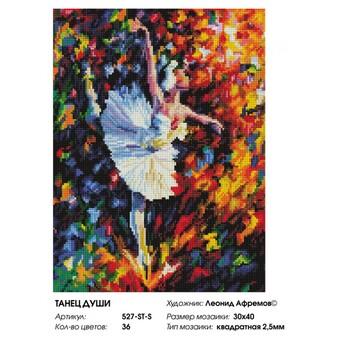 """527-ST-S Алмазная мозаика на подрамнике """"Танец души"""" (30х40 см)"""