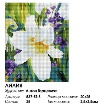 """537-ST-S Алмазная мозаика на подрамнике """"Лилия"""" (20х25 см)"""