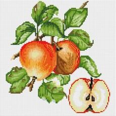 """581-ST-S Алмазная мозаика на подрамнике """"Яблочки"""" (30х30 см)"""