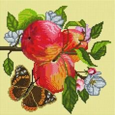 """586-ST-S Алмазная мозаика на подрамнике """"Яблоки на ветке"""" (30х30 см)"""