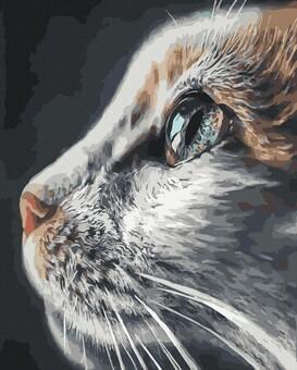 "DAB-37082 Картина по номерам ""Кошачий взгляд"" (40х50 см) на холсте"