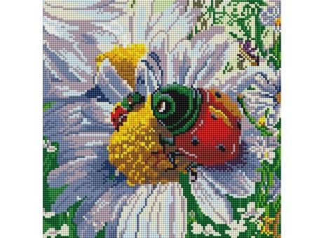 """086-ST-S Алмазная мозаика на подрамнике """"Летняя жизнь"""" (30х30 см)"""