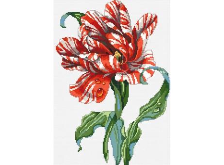 """6006-14 Набор для вышивания крестом """"Тигровый тюльпан"""" (23х32,5 см)"""