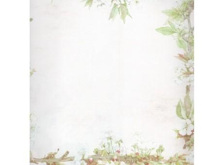 """056-SB Набор бумаги """"Яблоневый цвет"""""""
